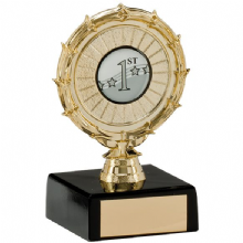 Spiral Gold Multisport Award